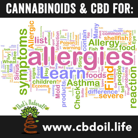 CBD for Asthma & Allergies – Cannabinoids can help benefit all of the Endocannabinoid System, which aids in immune system function – see more research from That's Natural at www.cbdoil.life and @cbdhempoil