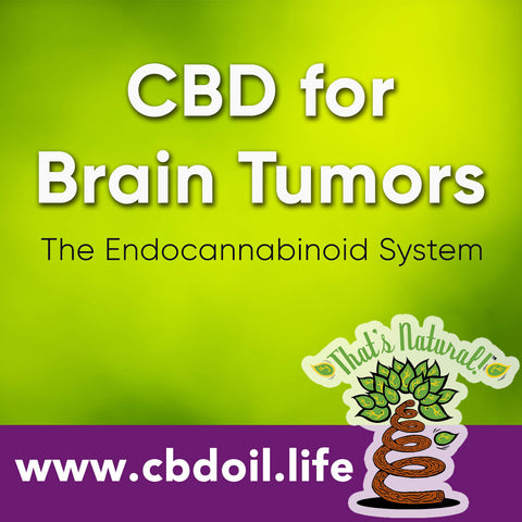 Could CBD (Cannabidiol) be a potential treatment for children's brain tumors?  News and research from That's Natural at www.cbdoil.life