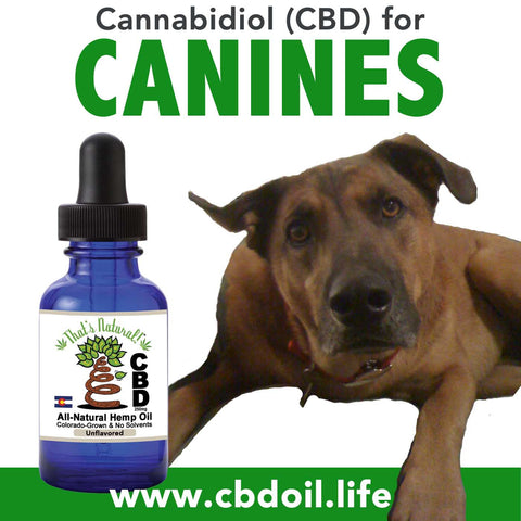 CBD for Dogs - News and research on applications for Cannabidiol for Canines - From the Cannabist.  See That's Natural full spectrum CBD Oil Products at www.cbdoil.life