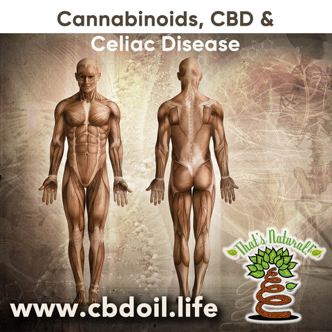 Cannabinoids like CBD may help people who suffer from #Celiac disease.  We all have cannabinoid receptors in our body through our Endocannabinoid System. Learn more at www.cbdoil.life