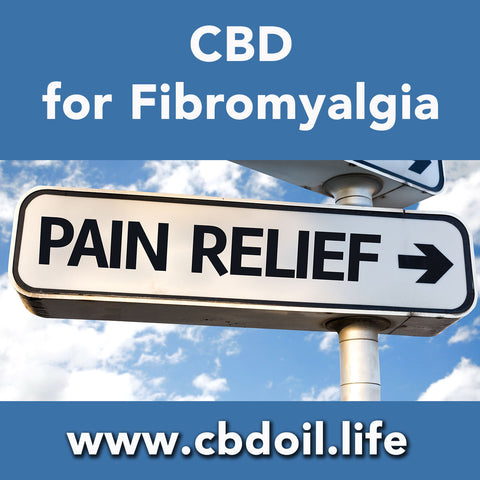 Can cannabinoids like CBD help with Fibromyalgia?  Preliminary research is showing that CBD can benefit humans' Endocannabinoid System!  See research and news from That's Natural at www.cbdoil.life and @cbdhempoil