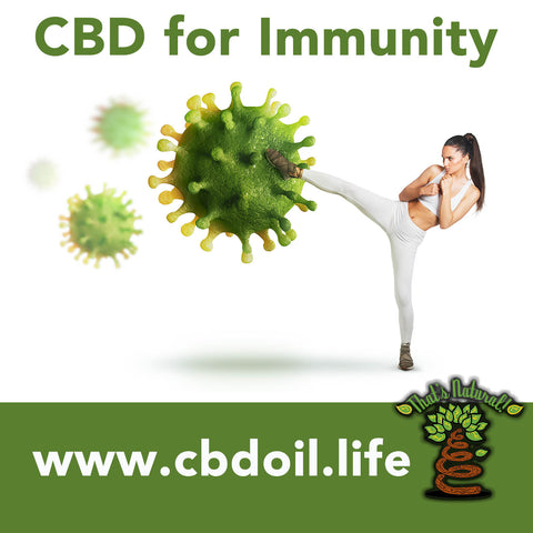 CBD for immunity, CBD for immune systems, Entourage Effect - That's Natural full spectrum CBD oil products with cannabinoids and terpenes - experience the entourage effect with Thats Natural CBD Oil, legal hemp CBD, hemp legal in all 50 States, CBD, CBDA, CBC, CBG, CBN, Cannabidiol, Cannabidiolic Acid, Cannabichromene, Cannabigerol, Cannabinol; beta-myrcene, linalool, d-limonene, alpha-pinene, humulene, beta-caryophyllene - find at cbdoil.life and www.cbdoil.life