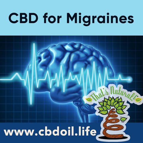Can CBD help with migraines?  Research is showing how cannabinoids like CBD can benefit the Endocannabinoid System!  .  See more at www.cbdoil.life and @cbdhempoil  #migraines #headaches #headache #migraine #natural #health #wellness #holistic #womenshealth #essentialoils #migrainessuck #migrainerelief #migraineremedy