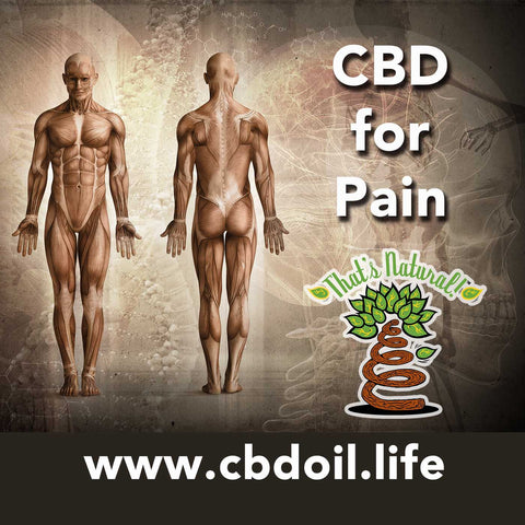 CBD may be helpful to those who suffer from Amyotrophic Lateral Sclerosis (ALS) or Lou Gehrig's Disease.  Learn more about full spectrum cannabinoids and terpenes from That's Natural at www.cbdoil.life and @cbdhempoil  #ALS #LouGehrigs #natural #health #immunity #welness #essentialoils