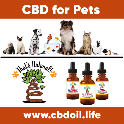 Pet CBD testimonials - CBD for pets, CBD for dogs, CBD for cats, CBD for birds, CBD oil for animals, That's Natural, Can CBD help animals, hemp-derived CBD, legal That's Natural Topical Products, full spectrum CBD Oil, entourage effects, cbdoil.life, www.cbdoil.life, legal in all 50 states, thatsnatural.info, www.thatsnatural.info