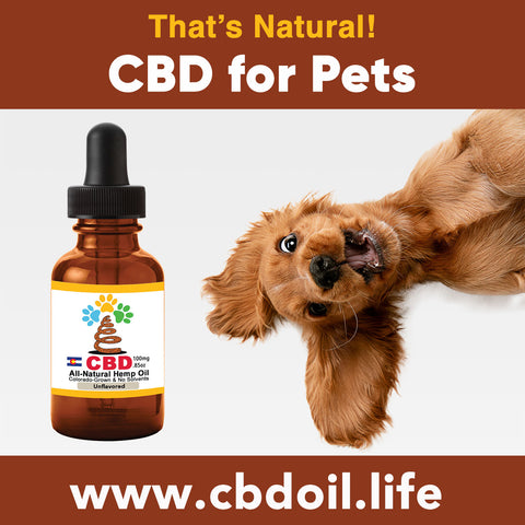 most trusted CBD for pets, best-rated CBD for dogs, best CBD for great danes, best CBD for chihuahuas, CBD for pets, CBD for dogs, CBD for cats, CBD for birds, CBD oil for animals, That's Natural, Can CBD help animals, hemp-derived CBD, legal That's Natural Topical Products, full spectrum CBD Oil, entourage effects, cbdoil.life, www.cbdoil.life, legal in all 50 states, thatsnatural.info, www.thatsnatural.info