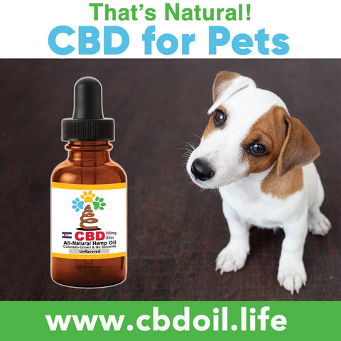 Dr. Stephanie McGrath is leading a study based out of Colorado State University (CSU), regarding CBD treatments for epilepsy and osteoarthritis in dogs.  Animals also have an Endocannabinoid System and may benefit from cannabinoid therapy.  Try our That's Natural full spectrum CBD-rich hemp oil – we are a premium product with complete transparency and traceability!  See more at www.cbdoil.life  @cbdhempoil  and find us in the #Aspen Valley right outside of #Basalt at our That's Natural Life Force Market! @thatsnatural #petstagram #petfood #naturalpet #naturalpetfood #naturalpetcare #essentialoils #dogs #canines #caninesofaustin #epilepsy #dogepilepsy #osteoarthritis  #dogstagram #dogsofinsta #dogsoftwitter #animals #animalsaddict #petsagram #dogslife #catslife #holistic #wellness
