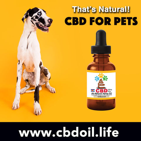 best-rated pet CBD, CBDA Oil, CBDP Oil - CBD for pets, CBD for dogs, CBD for cats, CBD for birds, CBD oil for animals, That's Natural, Can CBD help animals, hemp-derived CBD, legal That's Natural Topical Products, full spectrum CBD Oil, entourage effects, cbdoil.life, www.cbdoil.life, legal in all 50 states, thatsnatural.info, www.thatsnatural.info