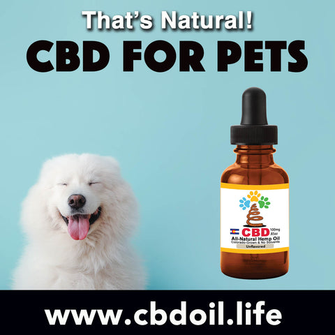 most trusted pet CBD, best-rated CBD for dogs, best CBD for great danes, best CBD for chihuahuas, CBD for pets, CBD for dogs, CBD for cats, CBD for birds, CBD oil for animals, That's Natural, Can CBD help animals, hemp-derived CBD, legal That's Natural Topical Products, full spectrum CBD Oil, entourage effects, cbdoil.life, www.cbdoil.life, legal in all 50 states, thatsnatural.info, www.thatsnatural.info