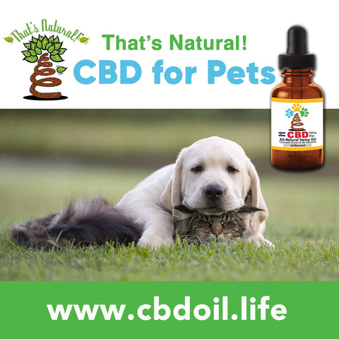Our CBD Oil for Pets is getting great reviews from customers! One customers had a dog with multiple tumors, who was not doing well at all. She could hardly walk, would cry out in pain, and was always extremely anxious because of the pain she was in. Her breathing was extremely fast due to the anxiety. After just one or two days of That's Natural's Pet tinctures, her breathing slowed, her movements became more fluent, and she was much more calm. See more about That's Natural full spectrum CBD-rich hemp oil at www.cbdoil.life and @cbdhempoil and find us in the #Aspen Valley right outside of #Basalt at our That's Natural Life Force Market! #carbondale #glenwoodsprings #pets #naturalpet #dogs #cats #caninesofaustin cbdhempoil #dogstagram #dogsofinsta #dogsoftwitter #animals #animalsaddict #petsagram #dogslife #catslife #holistic #healing #essentialoils #ThatsNatural #naturalbeauty