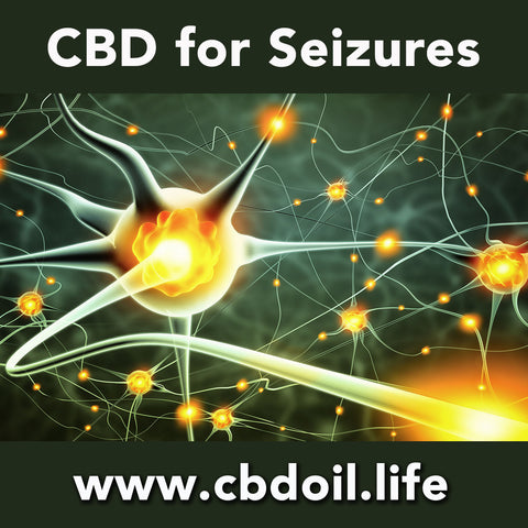 CBD and cannabinoids for the Endocannabinoid System and the treatment of epilepsy and seizures.  Research articles - That's Natural full spectrum CBD Oil at www.cbdoil.life