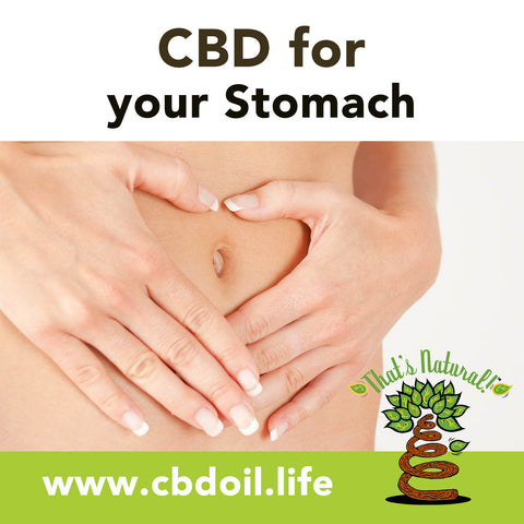 CBD for Stomach, CBD for gut, CBD for IBS, CBD for celiac, full spectrum hemp oil from That's Natural at www.cbdoil.life and Thats Natural at www.thatsnatural.info