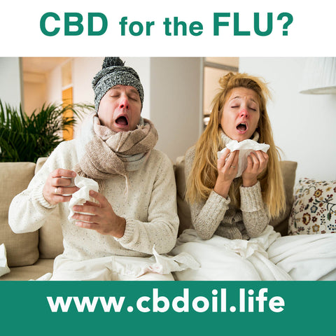 CBD for the Flu, CBD for colds, CBD for immune system, See more research and news at That's Natural CBD-Rich Hemp Oil - www.cbdoil.life and thatsnatural.info, Full Spectrum cannabinoids and terpenes for the entourage effect