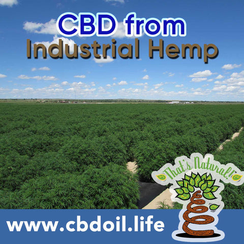 That's Natural CBD Oil from hemp - legal in all 50 States