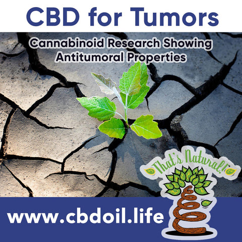 Research on Cannabinoids (like CBD) for Tumors - That's Natural CBD Oil from hemp - legal in all 50 States at www.cbdoil.life