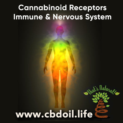 CBD for Immunity and the Nervous System - From That's Natural at www.cbdoil.life