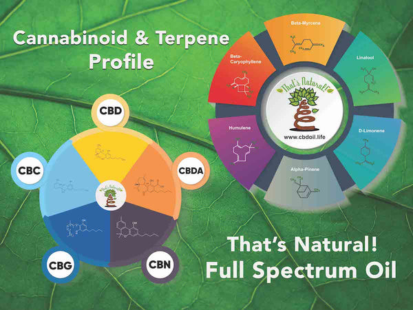 hemp-derived CBD, legal hemp CBD, The That's Natural cannabinoids include: CBD (Cannabidiol), CBDa (Cannabidiolic Acid), CBC (Cannabichromene), CBG (Cannabigerol), and CBN (Cannabinol) - Entourage Effect - see more from Thats Natural at www.cbdoil.life, cbdoil.life, and www.thatsnatural.info  see more from Thats Natural at www.cbdoil.life and find us an our Life Force Market outside of Basalt, Colorado in the Aspen Valley next to the Willits Gas Station #ThatsNatural #lifeforce #cod #cbdoil Beta-Caryophyllene, Anti-Bacterial, Terpenes, Cannabinoids, full spectrum, That's Natural, Thats Natural, CBD oil, hemp, cbd from hemp, legal in all 50 states, Mitch McConnell, Jeff Sessions, cbdoil.life. www.cbdoil.life, thatsnatural.info, www.thatsnatural.info