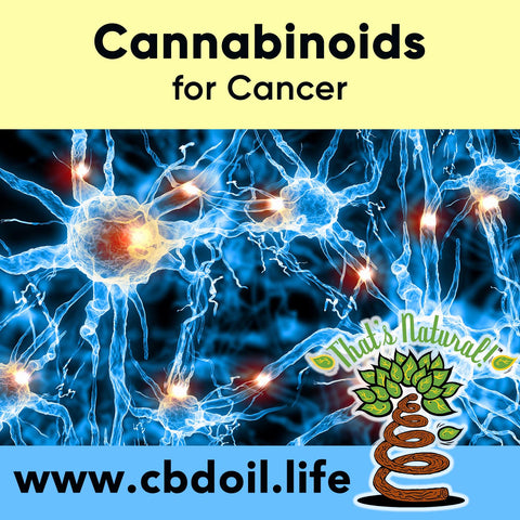 Many studies are starting to show the power of Cannabidiol (CBD) on cancer – specifically on leukemia cells.  See more news and research from That's Natural at www.cbdoil.life @cbdhempoil and find us in Colorado at @thatsnaturalmarket #leukemia #anticancer #inflammation #immunity #immunebooster #immunesupport #cancersucks #womenshealth #health #wellness #ThatsNatural #cancersucks #anticancer #alkaline #natural #remedies #holistic #holistichealth #superfood