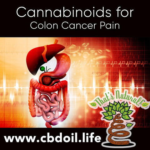 Cannabinoids for Cancer Pain - That's Natural CBD Oil from hemp - legal in all 50 States at www.cbdoil.life