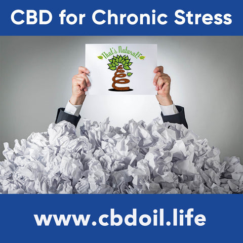 Research on Cannabidiol (CBD) is showing that cannabinoids may benefit and help people who suffer the negative health effects from chronic stress.  See more at www.cbdoil.life and @cbdhempoil and find us in the #Aspen Valley right outside of #Basalt at our That's Natural Life Force Market! @thatsnatural  #stress #essentialoils #inflammation  #PTSD #wellness #holistichealing #natural #immunity #immunityboost  #anxietydisorder #anxietyhelp #nervous #nervoussystem