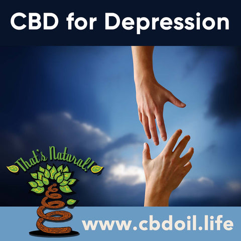 Research is showing that cannabinoids like CBD may help with #depression - each one of us has an Endocannabinoid System – that means we are pre-wired to be responsive to cannabinoids!   See more at www.cbdoil.life and @cbdhempoil – find us in #Colorado at @thatsnatural  #depression #anxiety #PTSD #sad #menshealth #womenshealth #depressionrecovery #depressionsucks #mentalhealth #peace #holistic #holistichealth #tbi