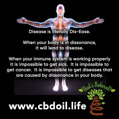 Immune System Defense and Building Immunity with CBD Oil from That's Natural at cbdoil.life