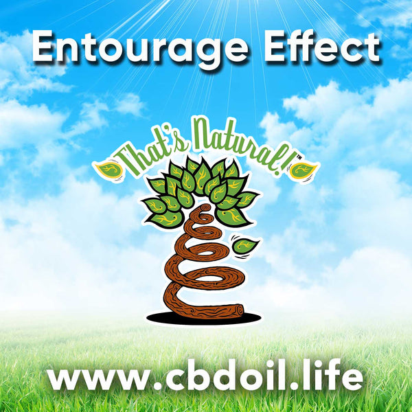 Entourage Effect with That's Natural CBD Oil at cbdoil.life