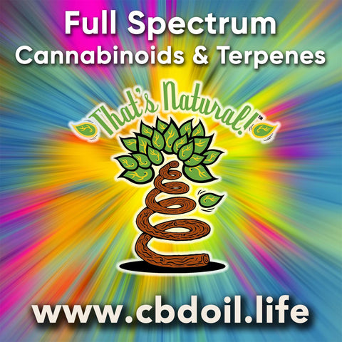 hemp-derived CBD from That's Natural full spectrum phytocannabinoids entourage effect - Precious plant compounds in That's Natural full spectrum CBD-rich hemp oil include other cannabinoids besides CBD (CBDA, CBC, CBG, CBN), terpenes (beta-myrcene, linalool, d-limonene, alpha-pinene, humulene, beta-caryophyllene) and polyphenols - See more about safe and effective hemp-derived CBD oil from Thats Natural at www.cbdoil.life and cbdoil.life and www.thatsnatural.info - legal hemp CBD, legal in all 50 states