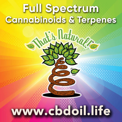 That's Natural best-rated CBD Oil for the Entourage effect and bioavailability! Precious plant compounds in That's Natural full spectrum CBD-rich hemp oil include other cannabinoids besides CBD (CBDA, CBC, CBG, CBN), terpenes (beta-myrcene, linalool, d-limonene, alpha-pinene, humulene, beta-caryophyllene) and polyphenols - See more about safe and effective hemp-derived CBD oil from Thats Natural at www.cbdoil.life and cbdoil.life and www.thatsnatural.info - legal hemp CBD, legal in all 50 states