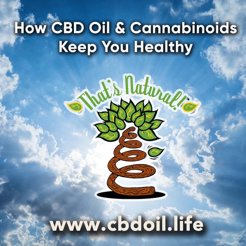 "From the Organic Authority ""7 Reasons You Need CBD Oil in Your Kitchen (and Medicine Cabinet)"" - see www.cbdoil.life"