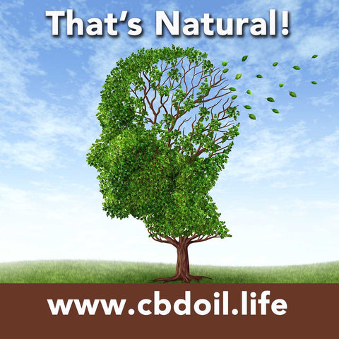 Article on CBD for Alzheimers and memory loss - That's Natural