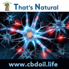 That's Natural CBD Oil - Research on Cannabinoids and Endocannabinoid System