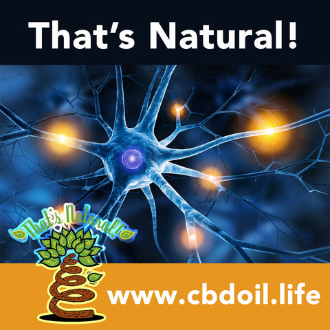 CBD, Cannabidiol, CBD for neuropathy, peripheral neuropathic pain, PNP, cannabinoids, terpenes, entourage effect, legal in all 50 states, That's Natural, Thats Natural, nerve protection - Full Spectrum CBD-Rich hemp oil from That's Natural at www.cbdoil.life, cbdoil.life, thatsnatural.info, www.thatsnatural.info