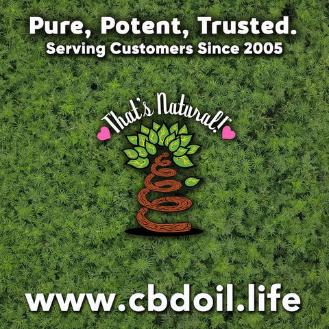 most trusted CBD products, best-rated CBD, CBD that actually works, CBD and CBDA Oil from That's Natural - pure CBD, potent CBD at www.cbdoil.life and cbdoil.life- Blog at www.thatsnatural.info