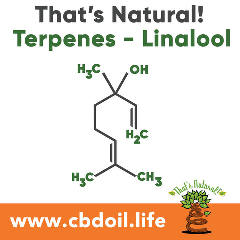 The That's Natural terpene profile includes: beta-myrcene, linalool, d-limonene, alpha-pinene, humulene, beta-caryophyllene - more from Thats Natural at www.cbdoil.life and find us an our Life Force Market outside of Basalt in the Aspen Valley next to the Willets Gas Station #ThatsNatural #lifeforce #cbd #cbdoil