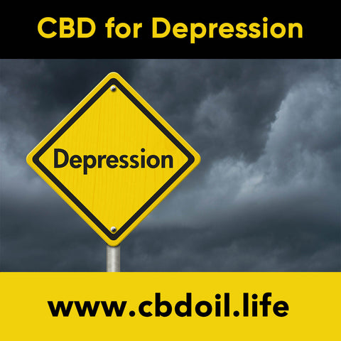 Can CBD help depression?  Research is showing that cannabinoids may benefit the Endocannabinoid System (ECS).   See more at www.cbdoil.life and @cbdhempoil #depression #anxiety #PTSD #sad #menshealth #womenshealth