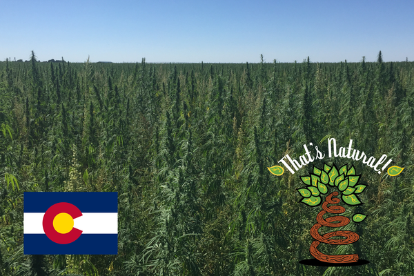 hemp-derived CBD, legal in all 50 States, That's Natural Farms - Cannabinoids, Terpenes, and the Entourage Effect with Supercritical CO2 extraction- CBD Oil from Colorado hemp legal in all 50 States - from Thats Natural at cbdoil.life and thatsnatural.info