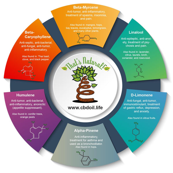 The That's Natural cannabinoids include: CBD (Cannabidiol), CBDa (Cannabidiolic Acid), CBC (Cannabichromene), CBG (Cannabigerol), and CBN (Cannabinol) - Full spectrum CBD oil from Thats Natural at www.cbdoil.life