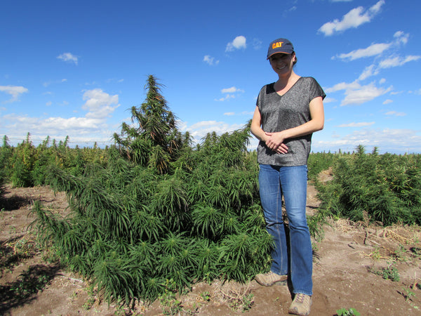 Tisha Casida, CEO of That's Natural with hemp plant in Colorado field - cbdoil.life