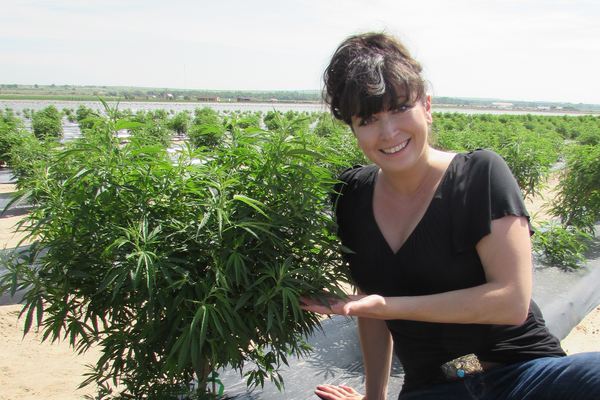 Tisha Casida, CEO of That's Natural in Colorado hemp field - www.cbdoil.life