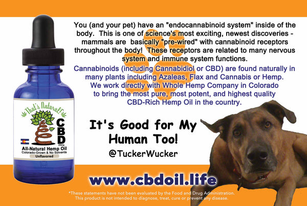 More and more pet owners are turning to CBD for their pets!  Find That's Natural full spectrum CBD Oil Products at www.cbdoil.life and @cbdhempoil and find us in the #Aspen Valley right outside of #Basalt at our That's Natural Life Force Market!  #dogstagram #dogsofinsta #dogsoftwitter #animals #animalsaddict #petsagram #dogslife #catslife #holistic #wellness #petstagram #petfood #naturalpet #naturalpetfood #naturalpetcare #essentialoils #dogs #canines #caninesofaustin #caninesofinstagram #ThatsNatural