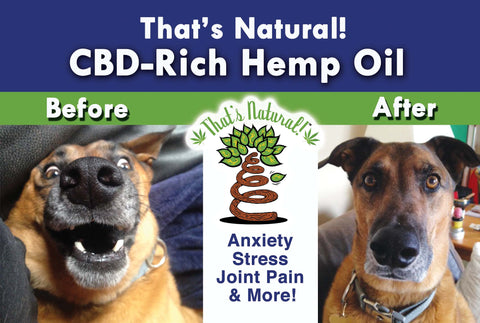 CBD Oil for Pets from That's Natural