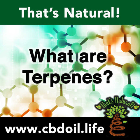 That's Natural Full Spectrum CBD Oil with Terpenes