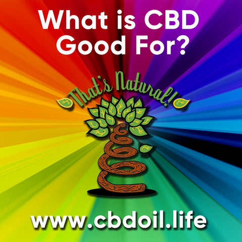 "Here are Four Major Health Conditions That CBD Oil Can Help!  #pain #cancer #seizures #sleep – Every body has an Endocannabinoid System!  That means you are ""pre-wired"" to be receptive to cannabinoids like CBD!  See more about That's Natural full spectrum CBD-rich hemp oil at www.cbdoil.life and @cbdhempoil and find us in the #Aspen Valley right outside of #Basalt at our That's Natural Life Force Market!  #epilepsy #insomnia #roaringforkvalley # essentialoils #essentials #depression #anxiety #PTSD #ptsdawareness #ThatsNatural"