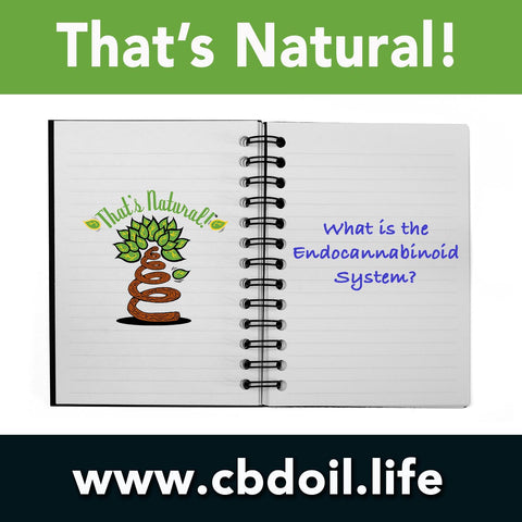 What is the Endocannabinoid System from That's Natural at www.cbdoil.life