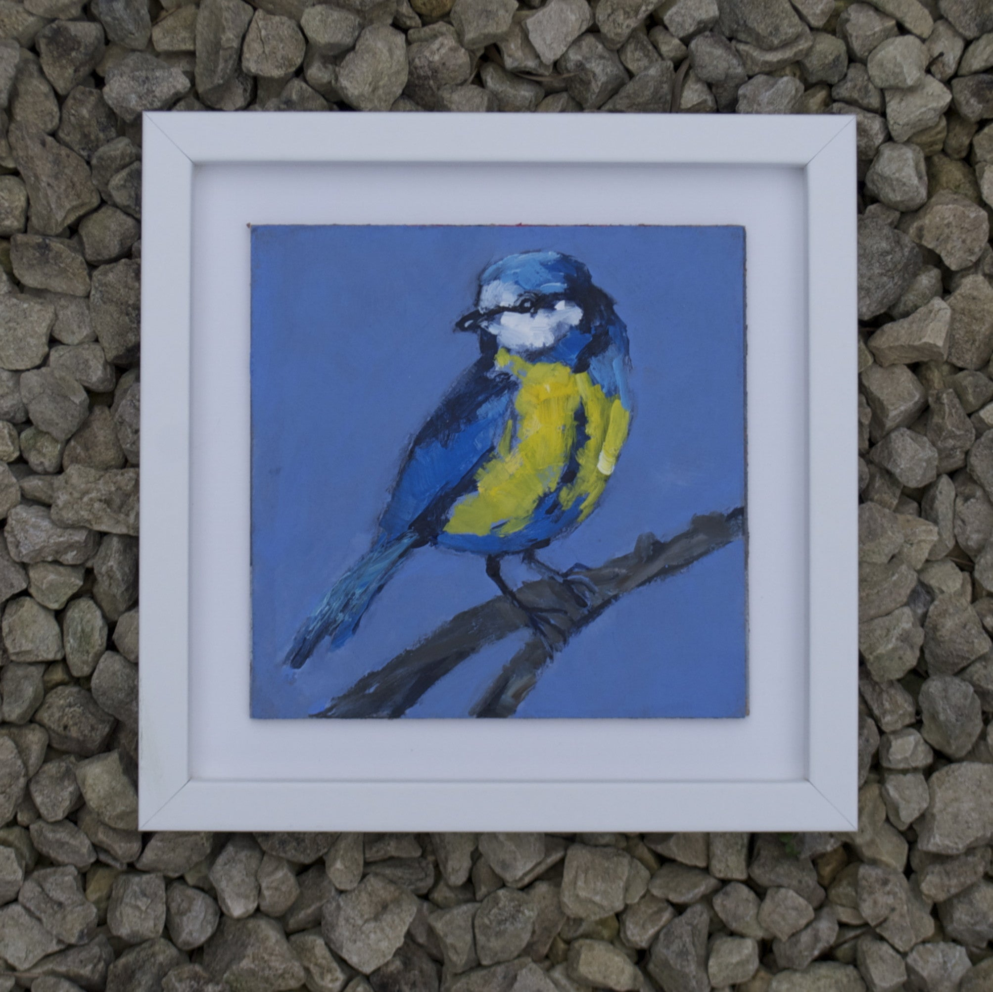 Blue tit - Original painting