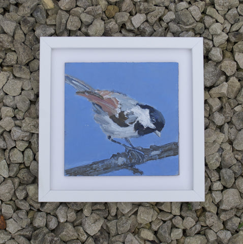 Coal tit - Original painting