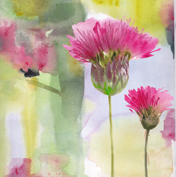 Thistles - Limited edition giclee print