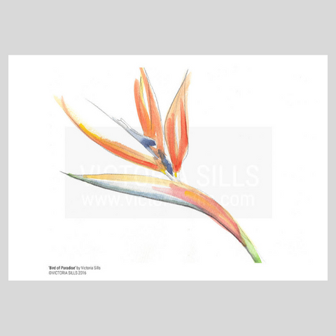 Bird of Paradise Giclée Print