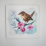Wren - Limited edition giclee print